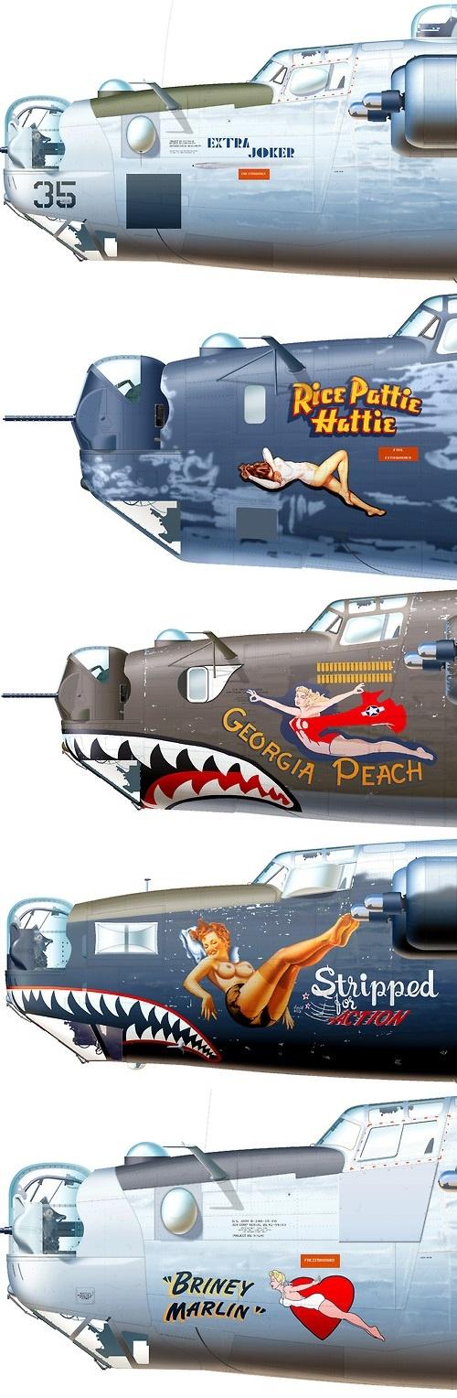 Consolidated B-24 Liberator Aircraft