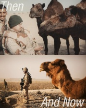 Camels & Soldiers