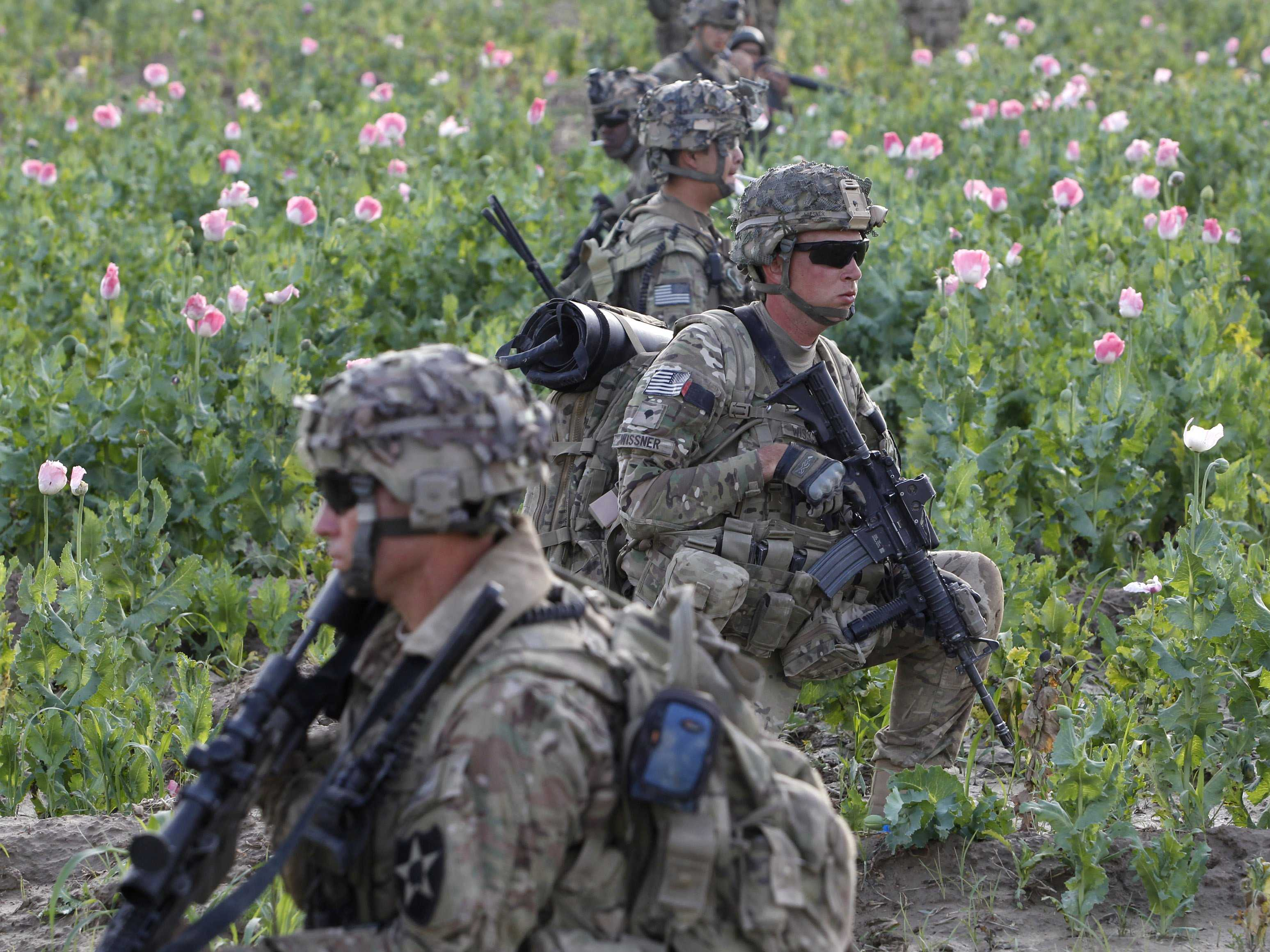 Soldiers & one of Afghanistan's poppy feilds