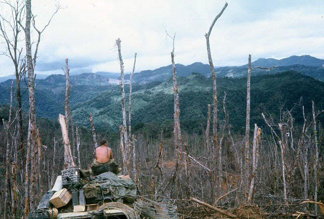 This is the picture of Hamburger Hill, Vietnam during the battle of Dong Ap Bia, May 1969.
