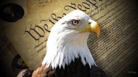 Eaagle-of-Freedom