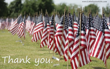 wpid-memorial_day_wide_wallpaper.jpg