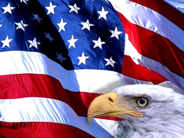 National Bald Eagle Day